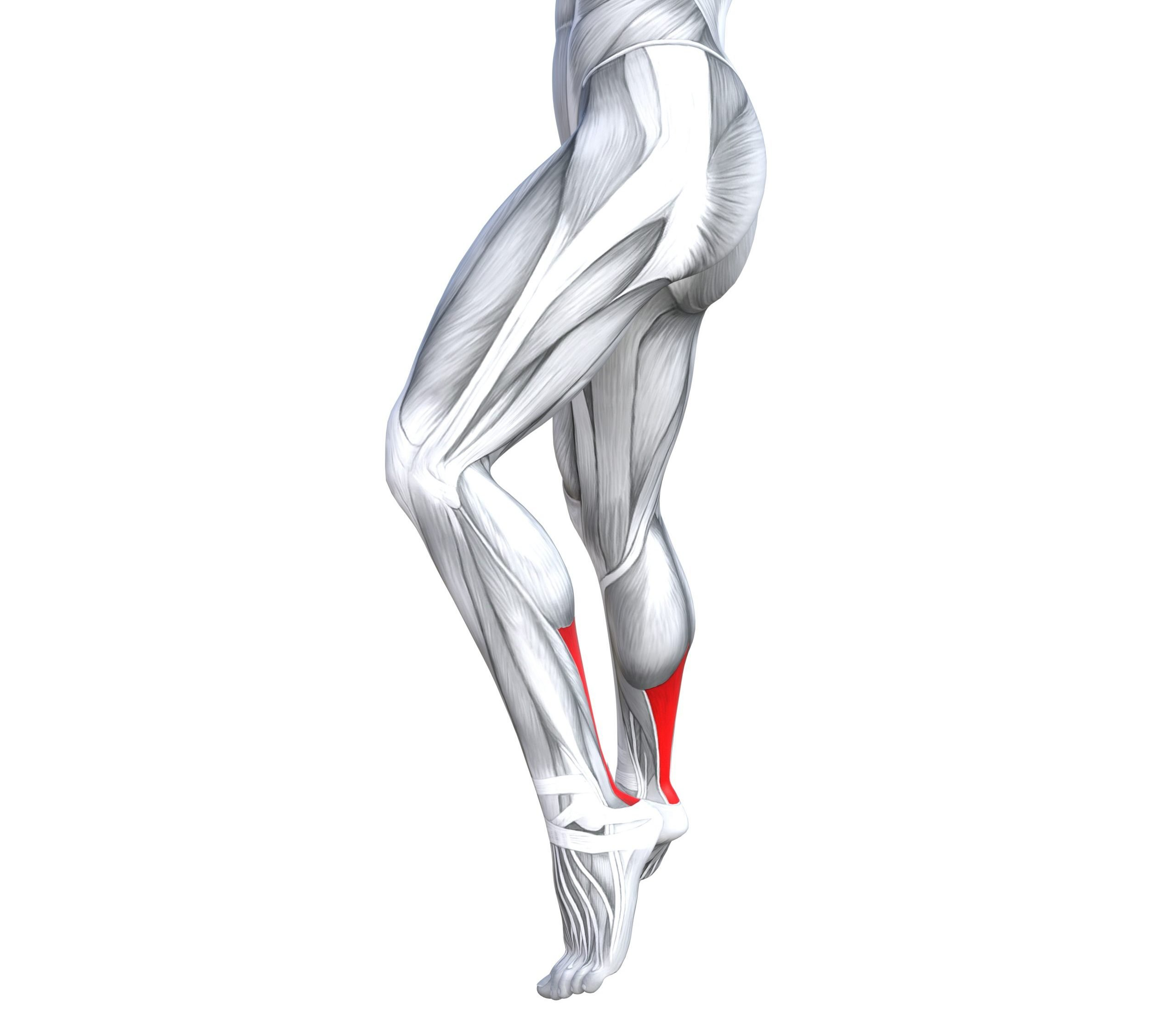 exercises for Achilles tendonitis | Feel Good Life with Coach Todd